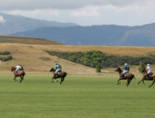 Flying H Polo Club
