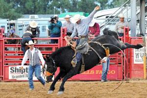 Sheridan WYO Rodeo
